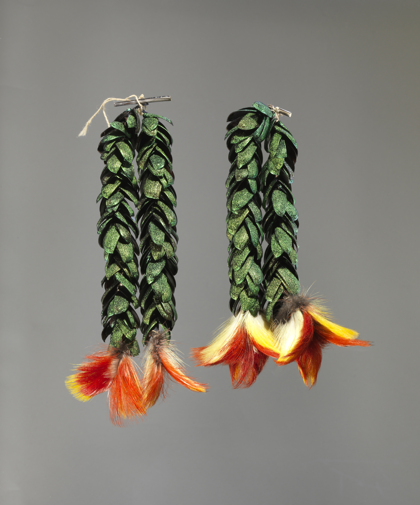 Shuar (Jívaro): Ear ornament (akitiai), 1960–75 (2010-217).Photo: Bruce M. White