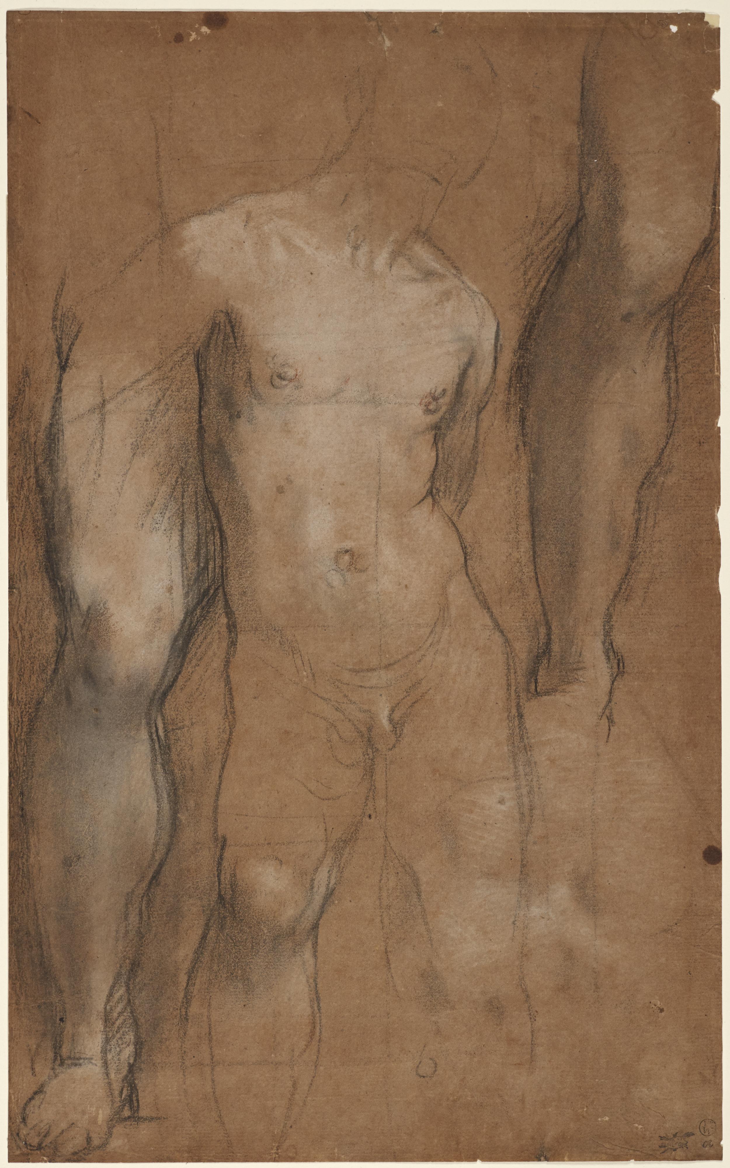 Federico Barocci, Urbino ca. 1535–1612 Urbino Studies for Saint Sebastian ca. 1592–96